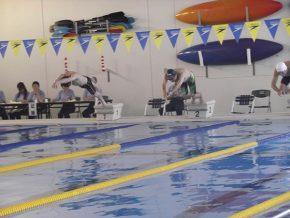 水泳競技の様子